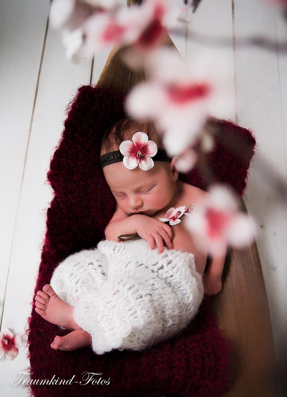 Traumkind Fotos Neugeborenen Fotos Essen 6 - Babyfotos