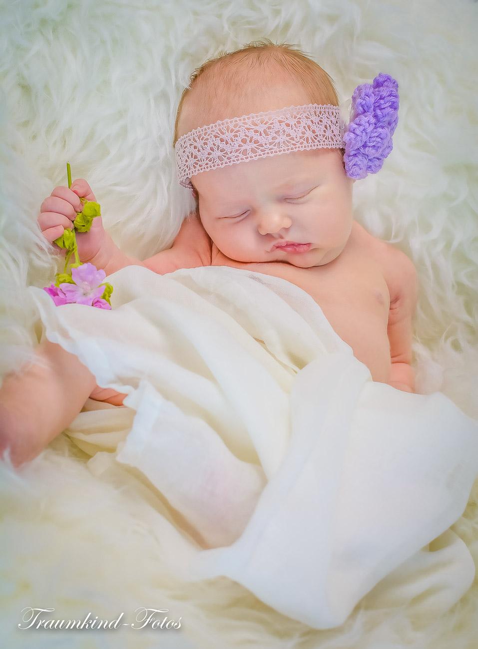 Traumkind Fotos Newborn Fotos Essen 8 1 - Babyfotos